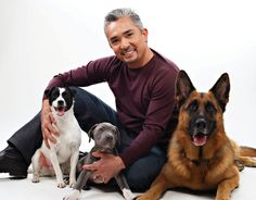 "How to Raise the Perfect Dog | Cesar Millan ... ""Only Human 'I' Listen Too"" !!! .. >◕.◕< .."