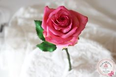 Sugar Rose by Maria cakes made with passion