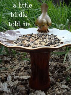 Bird Feeder OR Birdbath from old Plate & Flower Vase