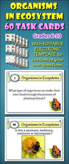 These 60 Task Cards with EDITABLE TEMPLATE provides a great activity for student centered enrichment or review. 36 task cards contain written questions and 24 task cards have diagrams of organisms that need to be identified (herbivores, carnivores, decomposers, omnivores, predator and scavenger). It is a handy tool for early finishers or as an independent study or group activity. This hits common core standards for reading, listening, writing and speaking.