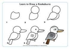 Learn to Draw Aussie Animals
