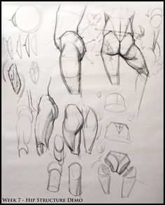 Analytical Figure Drawing SP08: Week 7 - Pelvis & Hip Structure Demo