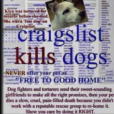 MAJOR FLAGGING EVENT! CALL TO ACTION! Due to so many backyard breeders posting on Craig's List, let's flag these posts between 12/12 - 12/14. Focus on your city to get the point across that they're killing shelter dogs, exploiting dogs for profit, & filling our shelters when their buyers decide they don't want them anymore. Just because they have the word 'REHOMING' in their post doesn't make it OK. We all know they're SELLING PUPPIES!!!  #FlagCraigsListPuppies