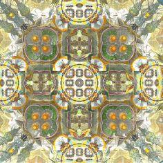A Garden in Forever #fractal #fractalart #abstract #art #contemporaryart #pattern #chaostheory #imaginaryplaces #thefractalist #beautiful #colourful #Abstractors_anonymous #artnerd2015 #artcollective #ratedmodernart #surreal42 #pinterest
