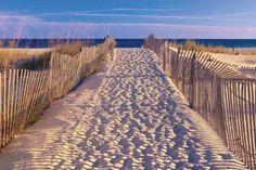 Zon, zee en strand elke dag!
