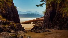 Beach near Tofino, Vancouver Island, Canada (© Cavan Images/Offset) – 2017-02-11 [http://www.bing.com/search?q=tofino+vancouver+island+canada&form=hpcapt&filters=HpDate:%2220170211_0800%22]