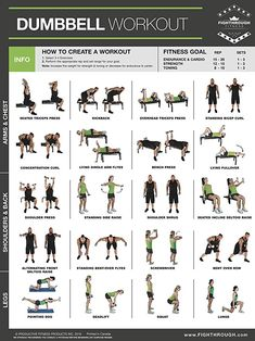 Dumbbell Exercises Laminated Poster Chart Strength Training Core Chest Legs Shoulders & Back Build Muscle, Tone Tighten is part of Plyometric workout - Full Body Dumbbell Workout, Plyometric Workout, Calisthenics Workout, Plyometrics, Dumbbell Exercises For Men, Chest And Tricep Workout, Body Exercises, Fitness Studio Training, Cardio Training