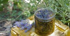 We have the perfect homemade gift for you this Christmas, Homemade Lavender Oil. It's a fantastic gift for that special person in your life. All you'll need is olive oil, fresh lavender and a canning jar. Flavored Oils, Infused Oils, Lavender Flowers, Lavender Oil, Diy Beauté, E 500, Christmas Gifts To Make, Christmas Ideas, Herbal Oil
