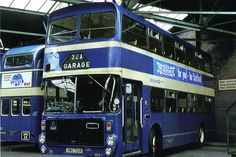 Busses, Coaches, Glasgow, Trains, Modern, Trainers, Trendy Tree, Train