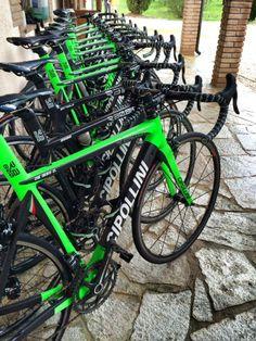 Cipollini teamfietsen Bardiane Valvole - CSF Inox team