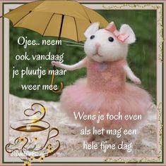 Teddy Bear, Humor, Umbrellas, Toys, Animals, Rain, Activity Toys, Animales, Animaux