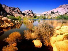 Joshua Tree National Park in California: due deserti in un parco   GIZZETA #JoshuaTree #JoshuaTreePark