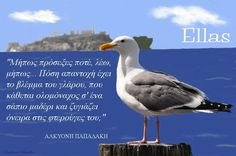 Greek Quotes, Picture Quotes, Philosophy, Greece, Literature, Thoughts, Sayings, Words, Pictures