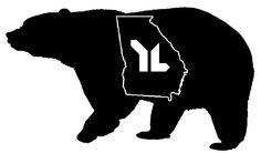 YL bear GA