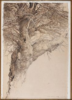 Baumstudie III /    Étude d'arbre III, 1988  Tusche auf Japanpapier auf Karton   94 x 70 cm  Privatsammlung, Rom  Abb. Seite 189 http://en.wikipedia.org/wiki/Jean-Pierre_Velly     http://www.velly.org/works_at_Panorama_6.html