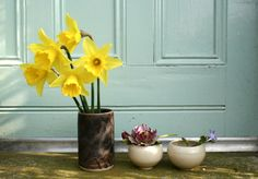Spring on the doorstep