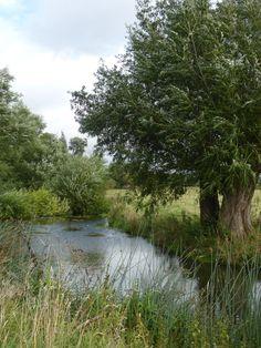 Somewhere near Great Alne, Warwickshire