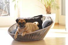 Dog Milk: Modern Dog Beds, Dog Houses & Crates