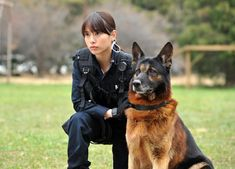 Police Dogs For Adoption Best Dogs For Families, Family Dogs, In Harm's Way, Japanese Drama, Police Dogs, Mystery Series, Cozy Mysteries, German Shepherd Dogs, German Shepherds