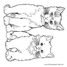 cat color pages printable | cat color page, animal coloring pages, color plate, coloring sheet ...