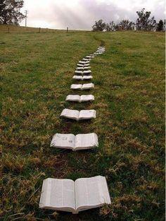 El camino de la lectura