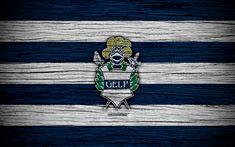 Download wallpapers Gimnasia, 4k, Superliga, logo, AAAJ, Argentina, soccer, Gimnasia FC, football club, wooden texture, FC Gimnasia
