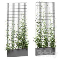 models: Fitowall - Ivy on the grid - Modern Design Garden Cafe, Terrace Garden, Indoor Garden, Metal Clock, Metal Wall Art, Photoshop, Landscape Design, Garden Design, Ivy Wall
