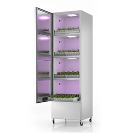 Growing vegetables has never been easier. Insert the pod, add water and select the item from the display. Simplicity, anytime, anywhere.  #tomatopiu