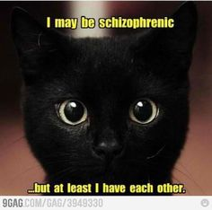 """I may be schizophrenic, but at least I have each other."" #funny #humor"