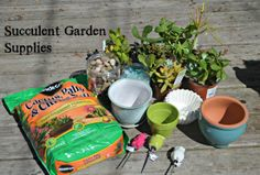Home      About      Contact      Disclosure »        Home      Personal »      Recipes      Promotional »      Technology »      Pop Culture »       Making Your Own Succulent Garden #DIHWorkshop – Home Depot Gift Card Giveaway
