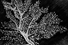 Black and white monochrome tree by Art By Silmairel on @creativemarket