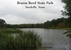 51 Cent Adventures: Brazos Bend State Park - Needville, Texas