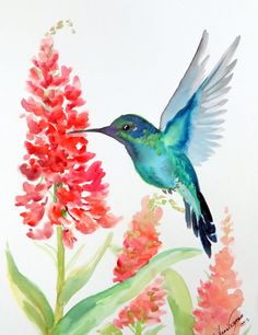 Hey, I found this really awesome Etsy listing at https://www.etsy.com/listing/127237847/original-watercolor-painting-hummingbird