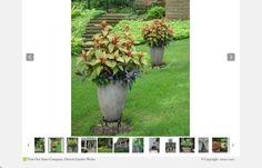 http://deborahsilver.com/portfolio/gardens/