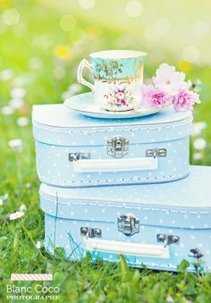 pretty and pastel luggage set