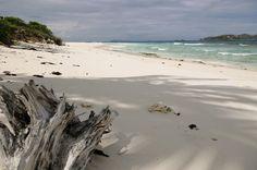 #Cousin #Island, #Seychellen / #Seychelles, © Rodrigues, Easyvoyage
