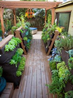 """For a couple who wanted a garage remodel so they can develop their cooking-school-for-kids business, Jamie Durie created a """"vegetable boardwalk"""" as part of the larger makeover. The vertical gardens greatly expand the amount of produce the couple can grow, and edibles are near the kitchen for easy care and harvest."""