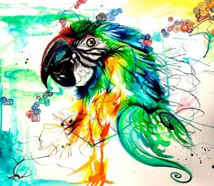 Parrot by Lucky978.deviantart.com on @DeviantArt