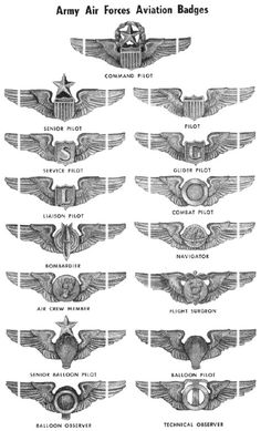 ARMY AIR FORCE AIRCREW Army Ranks, Military Ranks, Military Insignia, Military Life, Military Art, Military History, Military Aircraft, Military Personnel, Air Force Medals