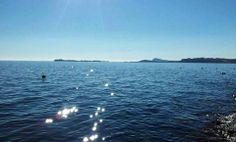 Stelle sull'acqua a #Gardone [#foto Marco R. Lombardi] #LagoDiGarda #VisitLagoDiGarda #GardaLombardia #VisitGardoneRiviera #TurismoLombardia #VisitLombardia