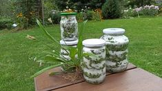 Korn, Kraut, Smoothie, Garden Sculpture, Mason Jars, Glass Vase, Outdoor Decor, Pictures, Syrup