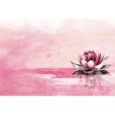 Maxwell Dickson 'Pink Lotus' Modern Canvas Wall Art | Overstock.com Shopping - The Best Deals on Canvas