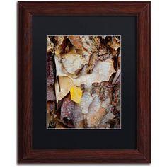 Trademark Fine Art Paper Birch Abstract Canvas Art by Kurt Shaffer, Black Matte, Wood Frame, Size: 16 x 20, Brown