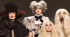Mac Haute Dogs, collezione make up autunno 2015 - http://www.beautydea.it/mac-haute-dogs-collezione-make-up-autunno-2015/ - Vi presentiamo la nuova collezione trucco Mac Haute Dogs dalle tonalità intense e autunnali!
