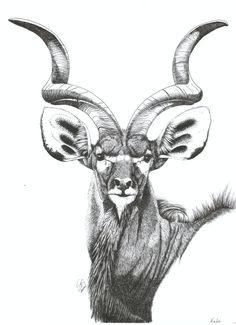Kudu+by+artsy-owl.deviantart.com+on+@DeviantArt