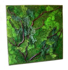 RR-16-12 Red branches, mosses and ferns combine for wonderful natural textures