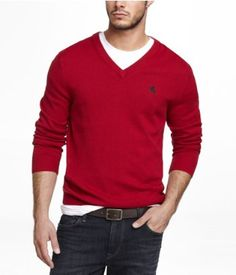COTTON V,NECK SMALL LION SWEATER