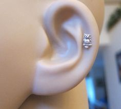 Tiny Owl Cartilage Earring Owl Tragus earring by GreatJewelry4All, $9.00