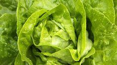 Die größten Lügen der Ernährungsforschung – Teil 9