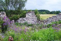 I want to grow a garden with stone walls from an old barn foundation.